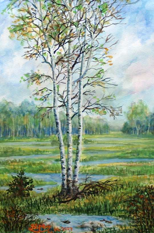 Three birches in the skirt
